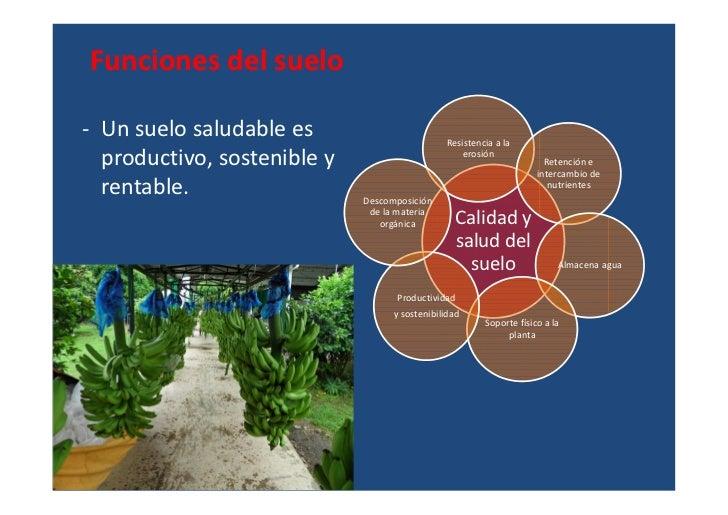 Inventario del recurso suelo uraba for Recurso clausula suelo