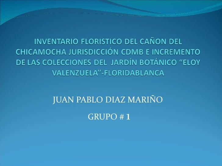 JUAN PABLO DIAZ MARIÑO  GRUPO #  1