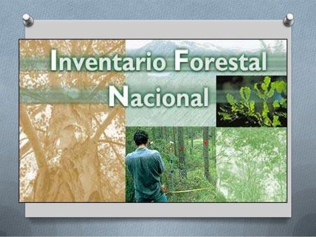 Inventario forestal for Materiales para un vivero forestal