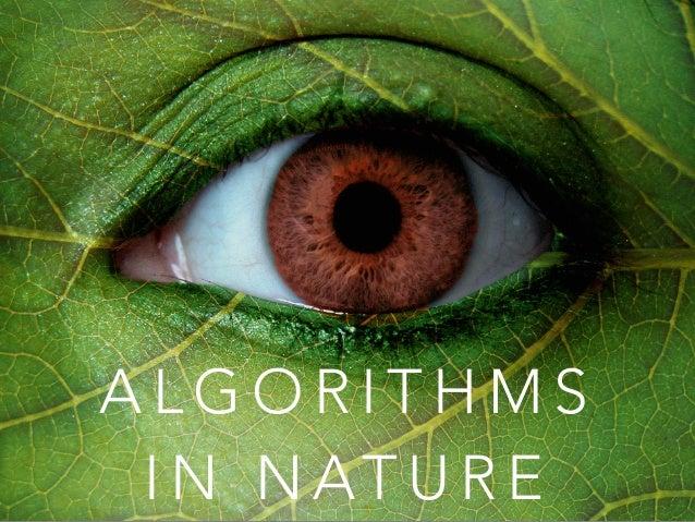 ALGORITHMS  IN NATURE