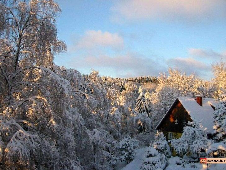 Inverno In Finlandia