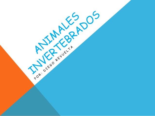 INVERTEBRADOS Los invertebrados son aquellos animales que no tienen columna vertebral. Son los animales más abundantes en ...