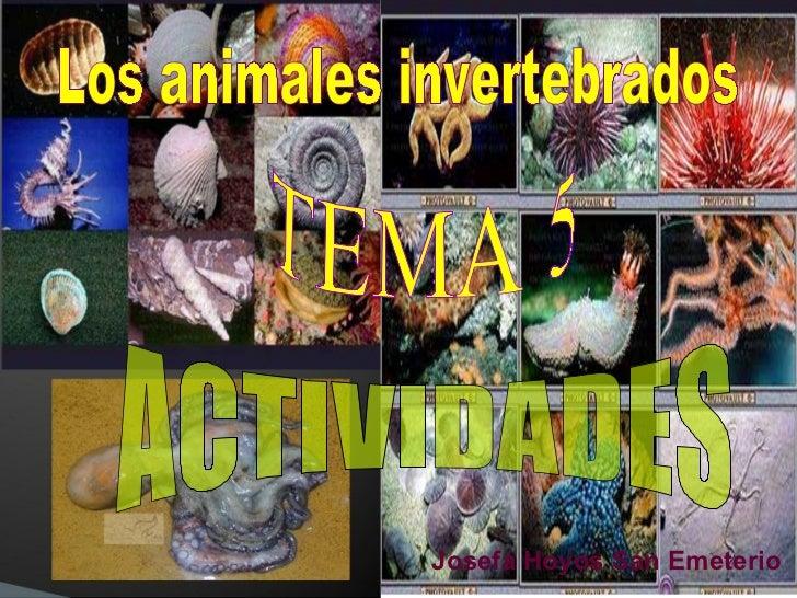 Los animales invertebrados TEMA 5 ACTIVIDADES Josefa Hoyos San Emeterio
