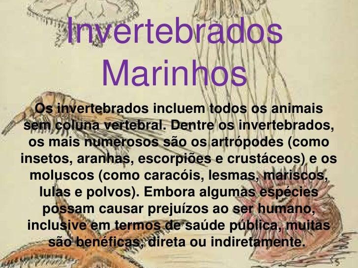 Invertebrados Marinhos <br />Os invertebrados incluem todos os animais sem coluna vertebral. Dentre os invertebrados, os m...