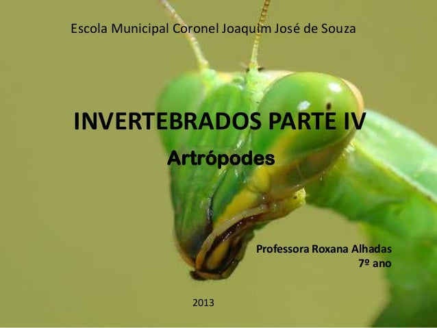 Escola Municipal Coronel Joaquim José de Souza  INVERTEBRADOS PARTE IV Artrópodes  Professora Roxana Alhadas 7º ano 2013