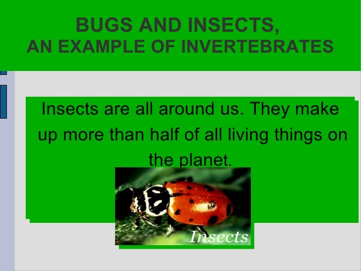 BUGS AND INSECTS,  AN EXAMPLE OF INVERTEBRATES Insects are all around us. They make up more than half of all living things...