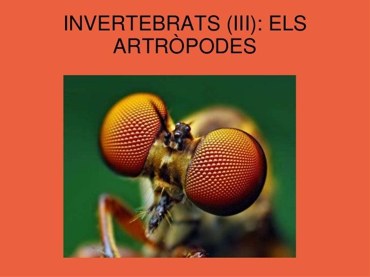 INVERTEBRATS (III): ELS ARTRÒPODES<br />