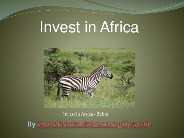 Invest in Africa Invest in Africa - Zebra