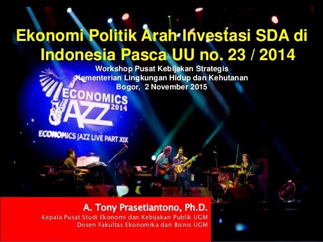 Ekonomi Politik Arah Investasi SDA di Indonesia Pasca UU no. 23 / 2014 Workshop Pusat Kebijakan Strategis Kementerian Ling...