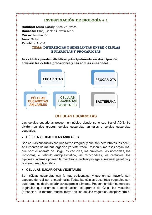 EUCARIOTAS CÉLULAS EUCARIOTAS ANILAMLES CÉLULAS EUCARIOTAS VEGETALES INVESTIGACIÓN DE BIOLOGÍA # 1 Nombre: Kiara Nataly Sa...