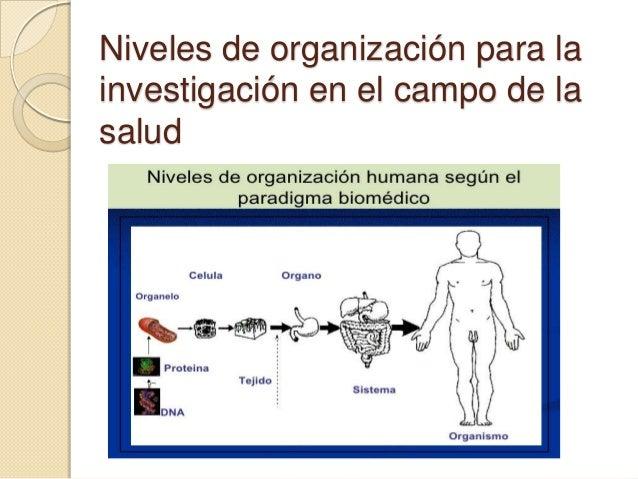 Niveles de organización para la investigación en el campo de la salud