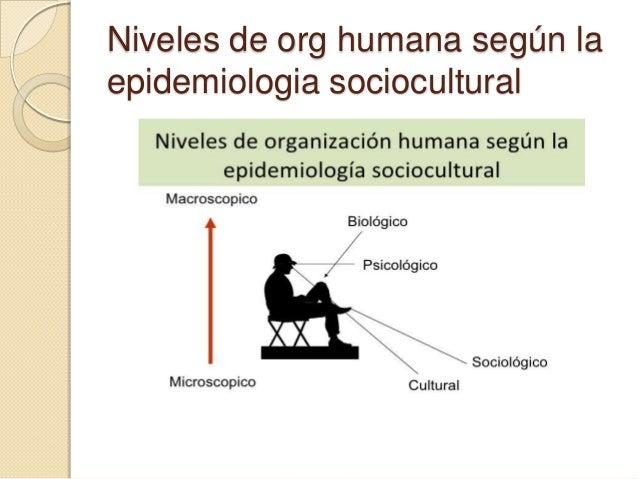 Niveles de org humana según la epidemiologia sociocultural
