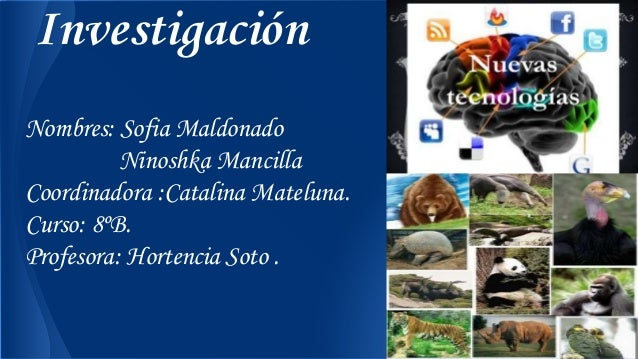 Investigación Nombres: Sofia Maldonado Ninoshka Mancilla Coordinadora :Catalina Mateluna. Curso: 8ºB. Profesora: Hortencia...