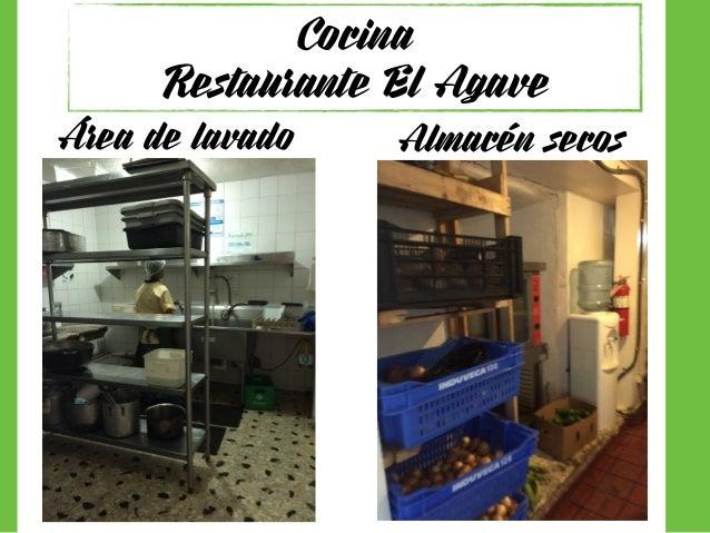 Investigaci n cocina mexicana for Cocina de investigacion