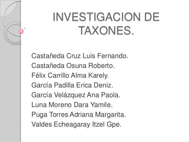 INVESTIGACION DETAXONES.Castañeda Cruz Luis Fernando.Castañeda Osuna Roberto.Félix Carrillo Alma Karely.García Padilla Eri...