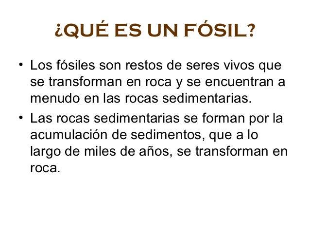 ¿QUÉ ES UN FÓSIL? • Los fósiles son restos de seres vivos que se transforman en roca y se encuentran a menudo en las rocas...