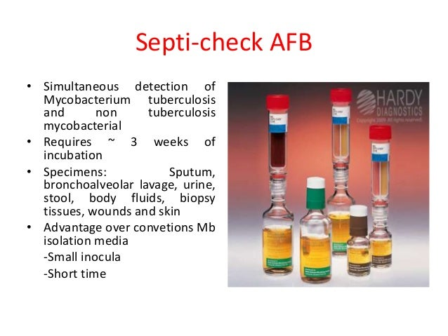 Investigations In Tuberculosis And Advances