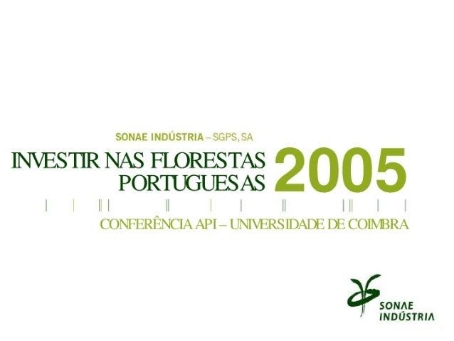 Investir na Floresta