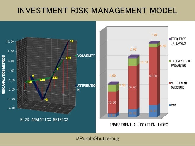 INVESTMENT RISK MANAGEMENT MODEL