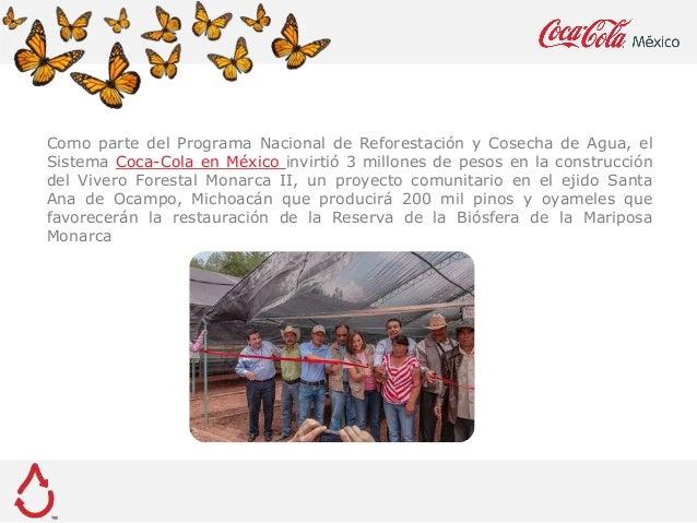 Invierte coca cola 3 millones de pesos en vivero para for Proyecto vivero forestal pdf