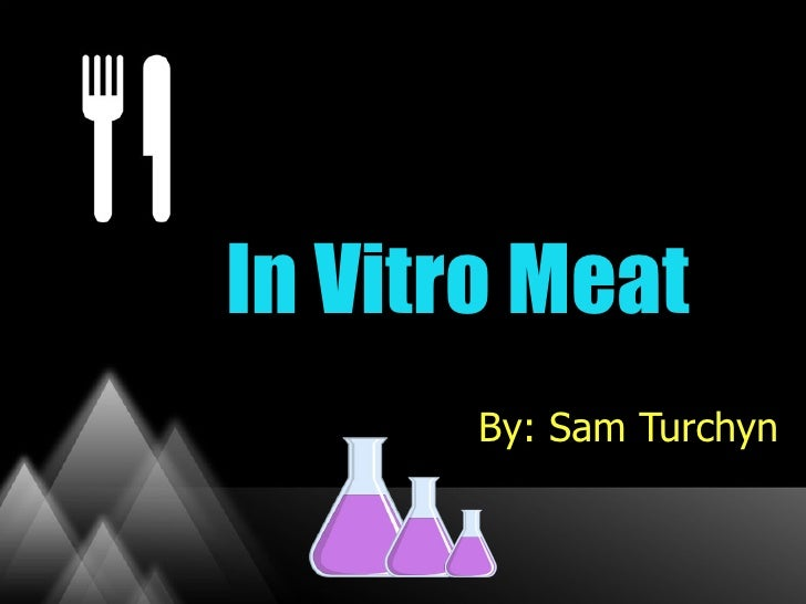 In Vitro Meat       By: Sam Turchyn
