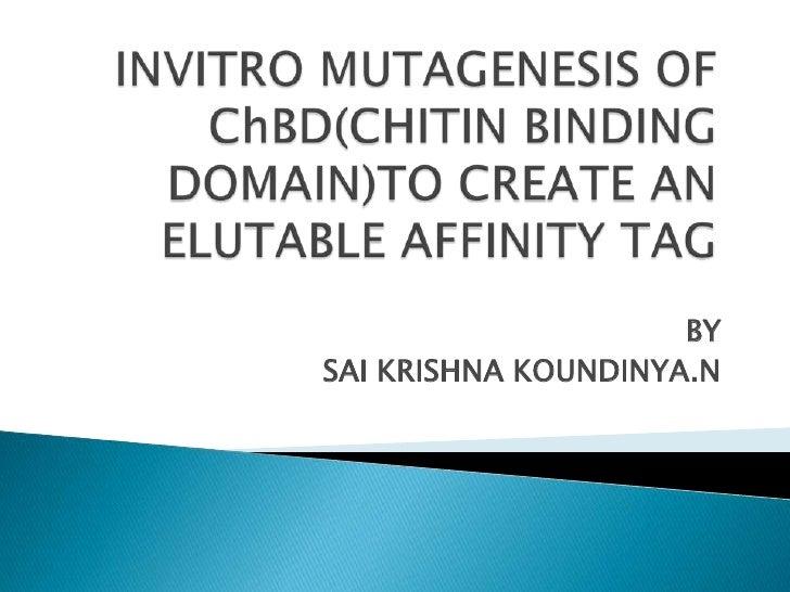 INVITRO MUTAGENESIS OF ChBD(CHITIN BINDING DOMAIN)TO CREATE AN ELUTABLE AFFINITY TAG<br />BY<br />SAI KRISHNA KOUNDINYA.N<...