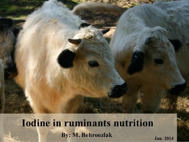 Iodine in ruminant nutriotion- Mohammad Behroozlak Slide 2