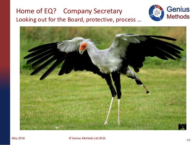 Home of EQ? Company Secretary Looking out for the Board, protective, process … May 2016 © Genius Methods Ltd 2016 43