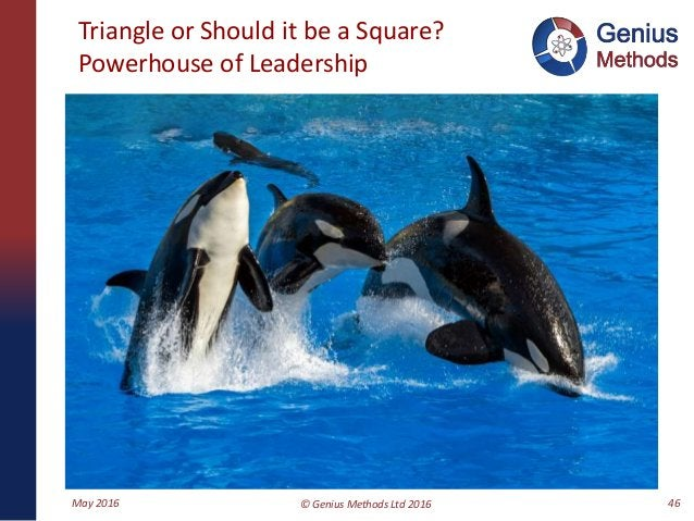 Triangle or Should it be a Square? Powerhouse of Leadership May 2016 © Genius Methods Ltd 2016 46