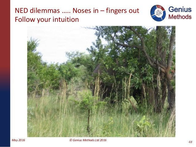 NED dilemmas ….. Noses in – fingers out Follow your intuition May 2016 © Genius Methods Ltd 2016 48