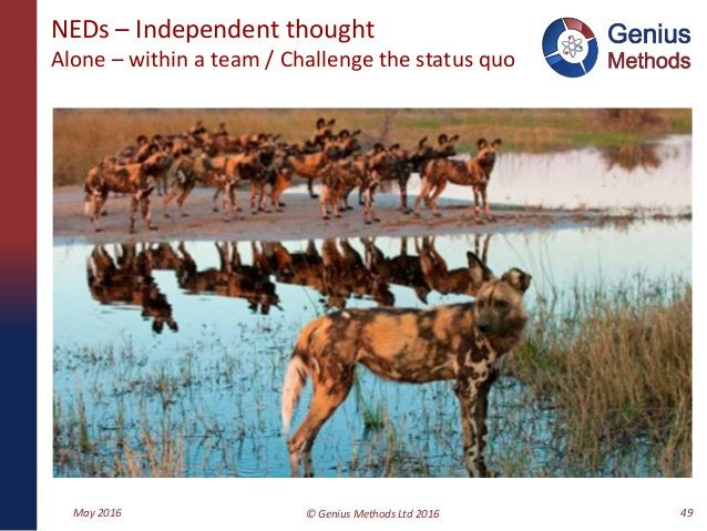 NEDs – Independent thought Alone – within a team / Challenge the status quo May 2016 © Genius Methods Ltd 2016 49