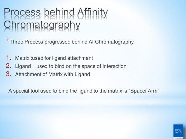 Ion exchange chromatography and affinity chromatography