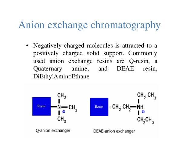 4 types of organic molecules