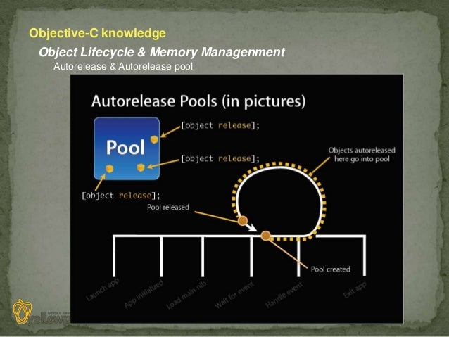 Objective-C knowledge Object Lifecycle & Memory Managenment   Autorelease & Autorelease pool