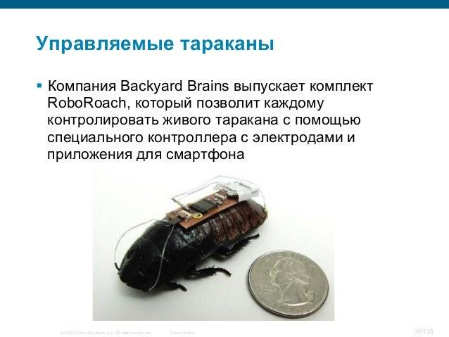 © 2007 Cisco Systems, Inc. All rights reserved. Cisco Public 30/139 Управляемые тараканы § Компания Backyard Brains выпу...
