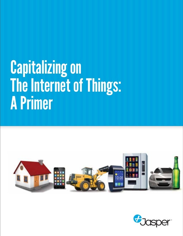 Capitalizing on  The Internet of Things:  A Primer
