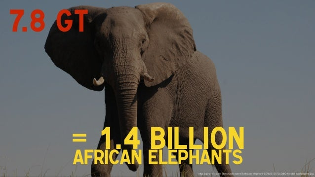 = 1.4 billionafrican elephants http://go-grafix.com/data/wallpapers/1/african-elephant-507625-3872x2592-hq-dsk-wallpapers.j...