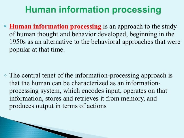 Human Information Processing System Implication For Is Design
