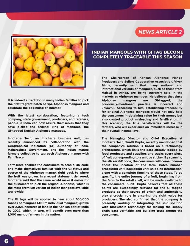 IP Flavors - 4th Edition | Newsletter
