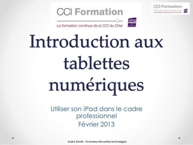 Introduction aux    tablettes   numériques  Utiliser son iPad dans le cadre             professionnel             Février ...