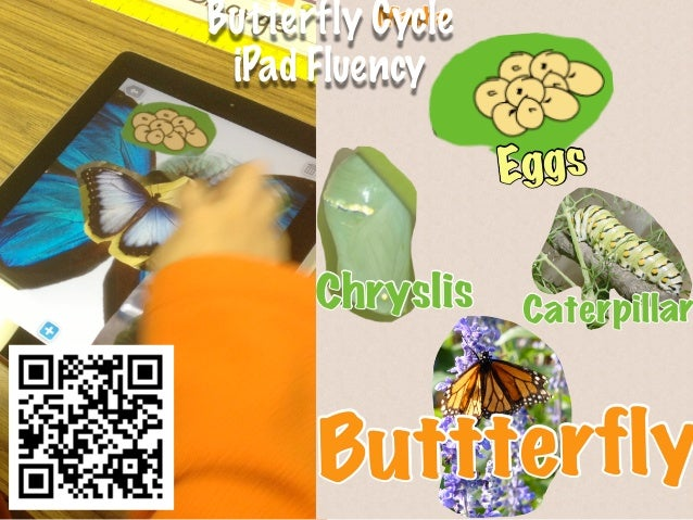Butterfly Cycle iPad Fluency