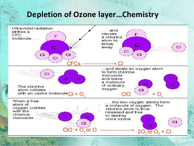 Essays on ozone layer depletion