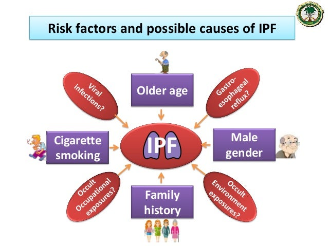 An update on the management of Idiopathic Pulmonary Fibrosis (IPF)