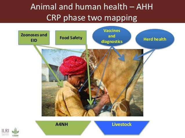 ILRI program outline: Animal and Human Health Slide 3