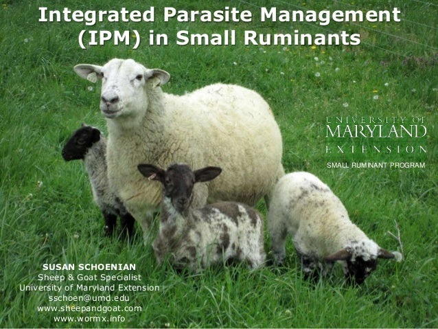 Integrated Parasite Management (IPM) in Small Ruminants SUSAN SCHOENIAN Sheep & Goat Specialist University of Maryland Ext...