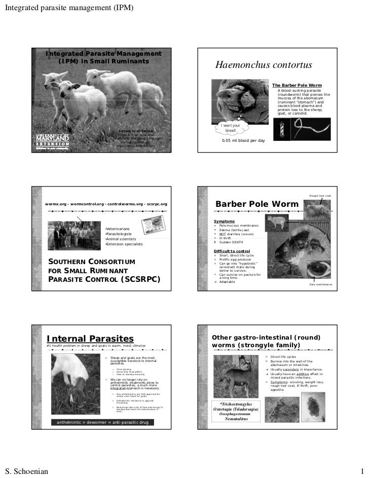 Integrated parasite management (IPM)           Integrated Parasite Management              (IPM) in Small Ruminants       ...