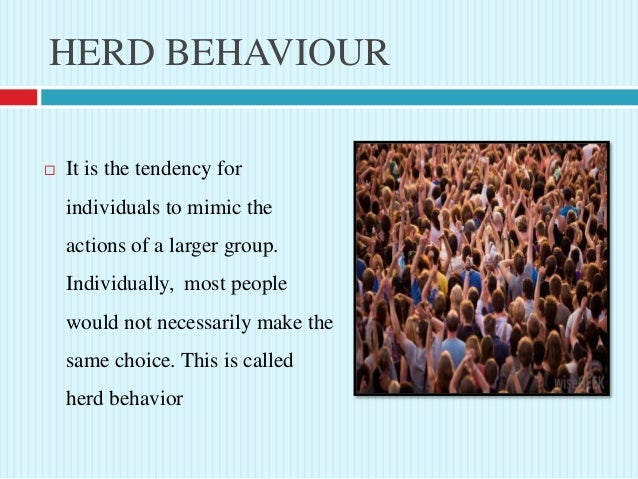 herd behaviour We are not quite the independent thinkers we like to believe we are people value safety in numbers and while imitating the actions of others is sometimes a good thing, we should be aware of how making decisions without thoughtful analysis can have a negative impact on our finances animals.