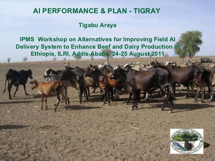 AI PERFORMANCE & PLAN - TIGRAY   Tigabu Araya IPMS  Workshop on Alternatives for Improving Field AI Delivery System to Enh...