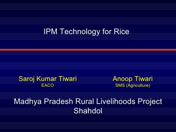 IPM Technology for Rice Madhya Pradesh Rural Livelihoods Project Shahdol Saroj Kumar Tiwari EACO Anoop Tiwari SMS (Agricul...