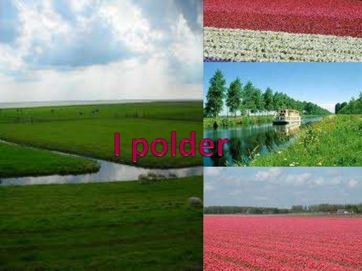 I polder<br />